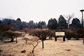 [Film 36] 日光 (日本)、瑞里 (嘉義)、南田 (台東):(日光) 霧降瀑布『'旁邊』的步道...XD