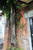 2013-03-02_Salsa台中社出遊:水管裡的樹 @二十一號倉庫