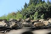2012-10-15_南竿慢慢遊:閩東式建築,都會用石頭壓住屋頂上的瓦片。(根據阿姨說她們小時候家裡窮,屋頂漏水也都用這種方式補酒)