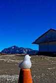 2014-01-01_美麗的中橫大冰箱:白色小鴨~