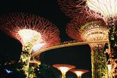 [Film 31] 2016年09月新加坡 & 12月生活:Sky Tree @Gardens By The Bay