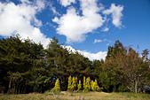 2014-11-24_福壽山農場 Day1:白雲、藍天、青山、綠樹