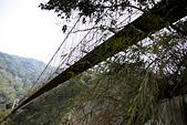 2013-03-22_阿里山森林遊樂區:『天長橋』,因為地基流失而封閉,但還是有很多阿陸仔偷爬上去