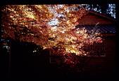 [Film 4] 2014/11/25 福壽山:這張可惜了...