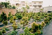 [Film 45] 2018上半年,萬金、土庫、北溪剪紙村、虎尾糖廠、日月潭、植物園:應該是要種來賣的,只敢從旁邊偷拍 哈