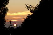 2013-03-22_阿里山森林遊樂區:夕陽西下