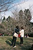 [Film 6] 2014年12月~2015年01月:〔2015-01-16〕清大梅園拍照的情侶