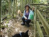 2010-09-30_瑞里印像區:跑來騙吃的狗狗XD
