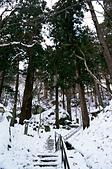 [Film48] 藏王樹冰、山寺、藏王狐狸村 (2019冬):前往「山寺」的中途。