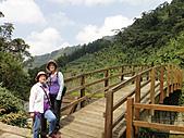 2010-09-30_瑞里印像區:野薑花溪步道