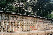 [Film 33] 三月關東_Day2/3東京&奧日光 (By 月光機):明治神宮