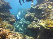 2013-06-15~17_OW潛水員訓練:海底悠遊