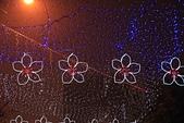 2013-02-25_新竹颩燈會:IMG_6180.jpg