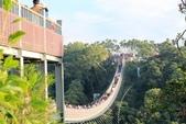 2013年02月_蛇年新春到處行:猴探井之『天空之橋』