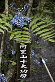 2013-03-24_海鼠山日出、雲潭瀑布、獨立山車站、太平:IMG_8096.jpg