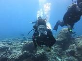 2013-06-15~17_OW潛水員訓練:哈哈,我遊得夠低喔