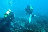 2014/06/28,29_小琉球&墾丁(陸地+海底):右邊的白蛙鞋是我^^ @墾丁的海底~