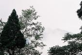[Film 12] 2015年06月阿里山鄉:今天的瑞里~雲霧嬝繞