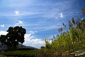 2013-03-23_瑞里國小 & 瑞太古道:藍天、綠樹、綠草