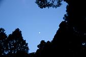 2013-03-22_阿里山森林遊樂區:『走』回程時的月色