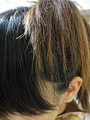 2010年05月生活:[無閃光] 但布丁頭其實很明顯