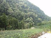 2010-09-30_瑞里印像區:DSC02441.jpg