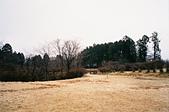 [Film 36] 日光 (日本)、瑞里 (嘉義)、南田 (台東):霧降瀑布『'旁邊』的步道,覺得這片黃色很美~