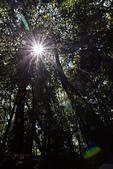 2014-09/28,29_武陵農場二日遊:充滿耀光的星芒~