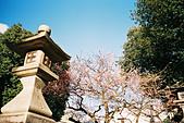 [Film 18] 金澤(2015/12) & 京都(2016/03):〔2016-03-11〕京都御苑
