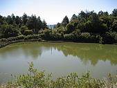 20090502 [台中]「大雪山森林遊樂區」之單人探險記:很醜的天池