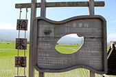 2012-08-11_伯朗大道、泰源幽谷、東河橋、都蘭(國小、糖廠)、杉原、伽路蘭、森林公園:這裡的每一塊稻田,都有主人的得獎標記