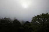 2013-03-22_阿里山森林遊樂區:因為錯過了末班小火車,準備『走』回程時,山間起了濃霧