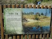 20090502 [台中]「大雪山森林遊樂區」之單人探險記:天池介紹