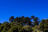 2014-01-01_美麗的中橫大冰箱:藍天、青山、綠樹 :P
