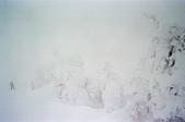 [Film48] 藏王樹冰、山寺、藏王狐狸村 (2019冬):滑雪客是比例尺的藏王樹冰