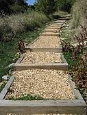 20090502 [台中]「大雪山森林遊樂區」之單人探險記:碎木步道