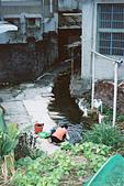 [Film 43] 2017/12~2018/02 的生活記錄:傳統的溪邊洗衣 @關西老街