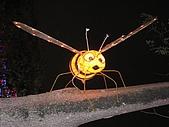 20090214 [宜蘭] 2009宜蘭燈會:宜蘭台灣燈會09