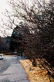 [Film 36] 日光 (日本)、瑞里 (嘉義)、南田 (台東):步行途中遇見的露珠