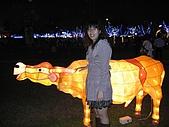 20090214 [宜蘭] 2009宜蘭燈會:宜蘭台灣燈會12