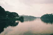 [Film 27] 2016年09~12月_新加坡 & 福壽山:「麥裡芝蓄水池」:一般遊客不會安排的地方,是個適合散步的漂亮大公園 !