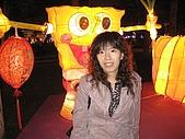 20090214 [宜蘭] 2009宜蘭燈會:宜蘭台灣燈會15