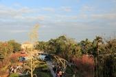 2013年02月_蛇年新春到處行:猴探井園區