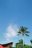 [Film 24] 2016年09月新加坡流浪記 Part1:這片雲長得跟樹有點像~