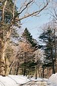 [Film 40] 華嚴瀑布+中禪寺湖+戰場之原+東照宮_2017年03月:湯滝旁停車場