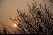 2014-01-18_清大梅園 & 平菁街42巷:陽明山的夕陽
