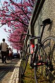 2014-01-30_平菁街櫻花 (除夕):腳踏車