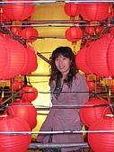 20090214 [宜蘭] 2009宜蘭燈會:宜蘭台灣燈會17