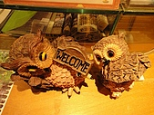 2010-05-09 母親節武陵農場行:遊客中心展示的貓頭鷹