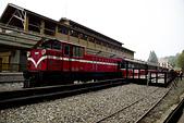 2013-03-22_阿里山森林遊樂區:阿里山小火車